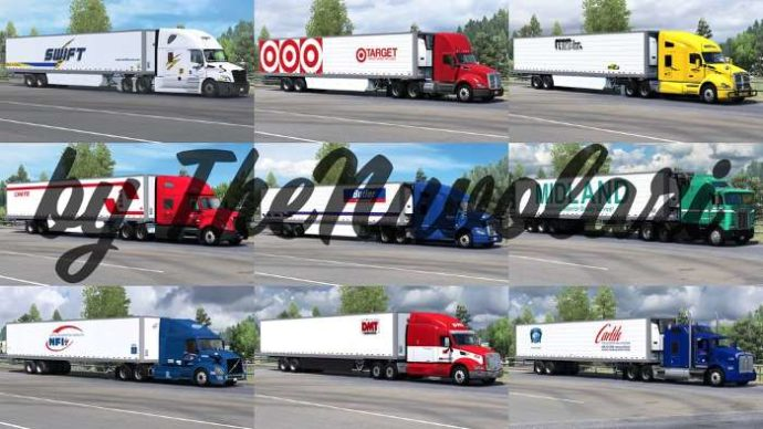 SCS 53ft Trailer Skinpack 1.1